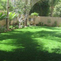 דשא סינטטי איכותי העומד בכל התקנים המחמירים
